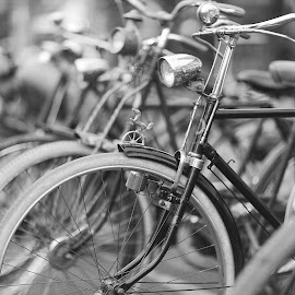 Mustang by Wei Fuk Lie - Transportation Bicycles ( classic, bicycle )