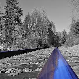 by Tracy Gordon - Transportation Railway Tracks (  )
