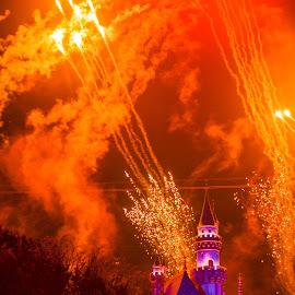 Disney Castle by Aditya Shrivastava - Buildings & Architecture Statues & Monuments
