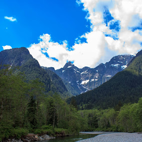 Flowing River by Devin Rieger - Landscapes Mountains & Hills ( water, mountain, canada, plants, goldenears, trees, rocks, river )