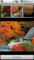 Screenshot of Kyoto Autumn Scenery