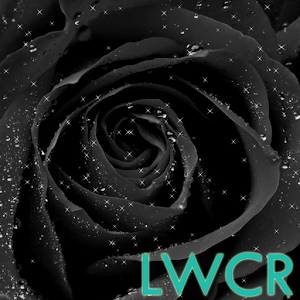 Black rose live wallpaper android apps on google play