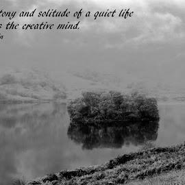 Solitude by Shona McQuilken - Typography Quotes & Sentences ( einstein, monotony, creative, black and white, quote, trees, solitude, loch, mist, island )