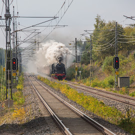 F1200 on special train by Claes Wåhlin - Transportation Trains ( steam locomotive, sweden, gävle, special train, steam )