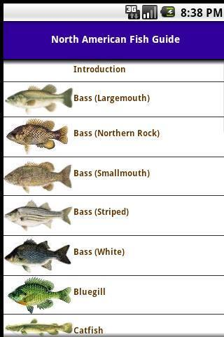 North American Fish Guide