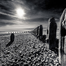 Tall Ships by Alan Wilson - Landscapes Beaches