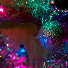Decked! by Chris Taylor - Public Holidays Christmas ( lights, holiday, festive, 365, macro, christmas lights, christmas, sparkle, decorations, close up, bokeh, decoration, object )