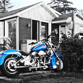 by Michelle Bonin - Transportation Motorcycles