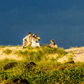 Special Moment by Petra Bensted - Wedding Other ( sand, dunes, family, wedding, celebration, beach, landscape, evening )