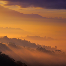 Misty Setumbu by Rigo Hidayat - Landscapes Mountains & Hills ( hill, mountain, magelang, setumbu, sunrise, morning, landscape, misty )