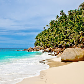 at Fregate island by Dmitry Samsonov - Landscapes Beaches ( indian ocean, fregate, beach, seychelles, palms, island )