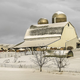 Winter on the Farm by Michelle Cox - Buildings & Architecture Other Exteriors
