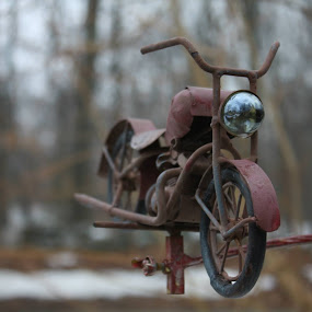 Ready to Ride by Sarah Benoit Weir - Novices Only Objects & Still Life (  )