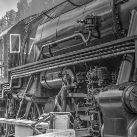 by Barry Butler - Transportation Trains (  )