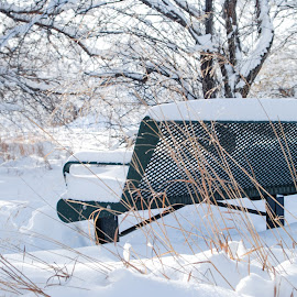 Snowy Bench by Eric Tanner - Artistic Objects Furniture