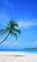 Screenshot of Photo Wallpapers