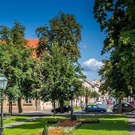 Bjelovar by Štefan Brajković - City,  Street & Park  City Parks ( bjelovar-bilogora county, croatia, bjelovar )