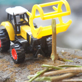 by Gunawan Abdul Basith - Artistic Objects Toys ( diecast, wood, grapper, tractor, lodge )