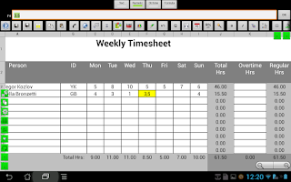 Screenshot of e-Droid-Cell Pro Spreadsheet