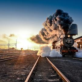 by Rob Vandongen - Transportation Railway Tracks (  )