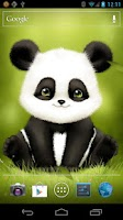 Screenshot of Panda Bobble Live Wallpaper