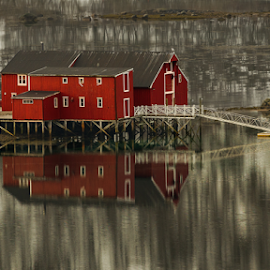 The Pier by Ann-Kristin Heimly - Buildings & Architecture Other Exteriors ( red, winter, pier, norway, fjord )