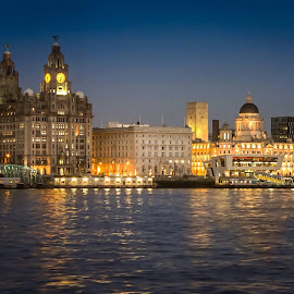 Liver Buildings.  by Steve Leonard - City,  Street & Park  Skylines
