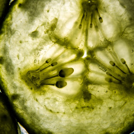 Cucumbers by Megan Smith - Abstract Macro ( abstract, macro, cucumber, macro photography, vegetables )