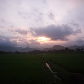 by Herman Bagus - Instagram & Mobile Instagram ( sunset, field, fotonesia, instanusantara, nature, beautiful )