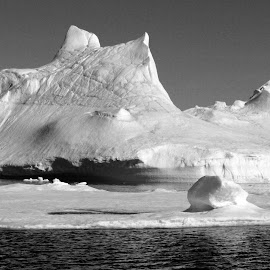 Iceberg at East-Greenland by Bernhard Bußmann - Landscapes Waterscapes ( b/w, iceberg, greenland )