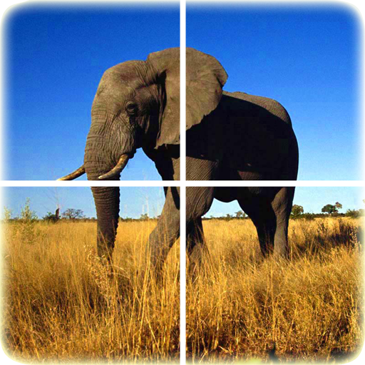 動物のパズル 解謎 App LOGO-APP試玩