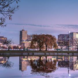 by Steve Morrison - City,  Street & Park  City Parks
