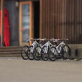 ERICEIRA.PT by Guilherme  Junior - Transportation Bicycles ( bikes, transportation, surf, landscapes )