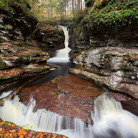 Adams Falls by Tim Devine - Nature Up Close Water ( adams falls, stream, autumn, kitchen creek, creek, waterfall, pennsylvania, ricketts glen state park )