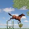 Jumping Pony