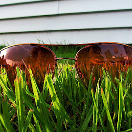 Reflection of life by Josh Woodcock - Artistic Objects Clothing & Accessories ( reflection, grass, green, sunglasses,  )