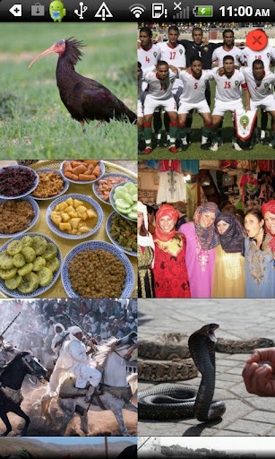 Country Facts Morocco