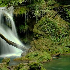 Summer Green by Mihaela Jurca - Landscapes Waterscapes ( la văioaga, national park, waterfall, summer )