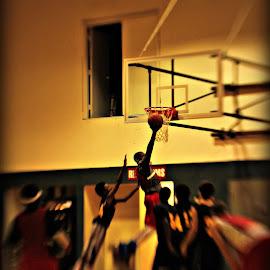 Basketball by Pam Longville - Sports & Fitness Basketball