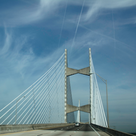 Dames Point Bridge by Judy Hall-Folde - Buildings & Architecture Bridges & Suspended Structures ( point, dames point bridge, bridge, dames )