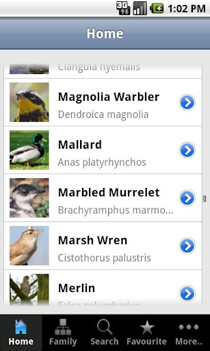Birds of Canada Guide