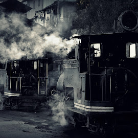 Toy Train by Nikhilesh Das - Transportation Trains