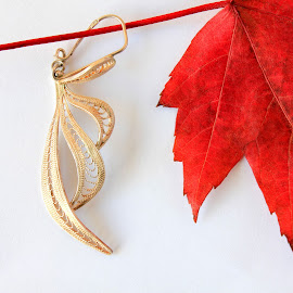 Red by Besnik Hamiti - Artistic Objects Jewelry ( red, kosovo, silver, jewelry, leaf, filigran, earing )