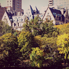 The Dakota  by Andrew Michaelsen - Travel Locations Landmarks ( autumn leaves, beauty, new york city, dakota building )
