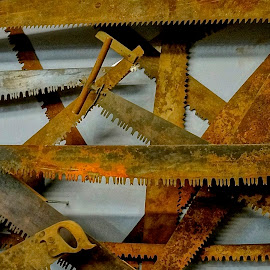 Saws on the Wall by Barbara Brock - Artistic Objects Industrial Objects ( rusty saws, old tools, rusty tools, antique tools )