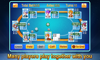 Screenshot of Texas Poker