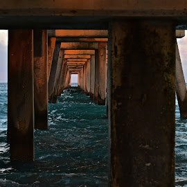by Steven Aicinena - Buildings & Architecture Bridges & Suspended Structures