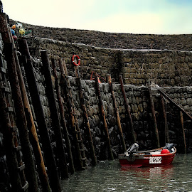 Waiting by Greg Brzezicki - Transportation Boats ( ladder, red, sea, stones, boat,  )