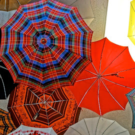 Catching the Rain by Barbara Brock - Artistic Objects Clothing & Accessories ( colorful umbrellas, looking up at umbrellas, umbrellas, rain fashionwear )