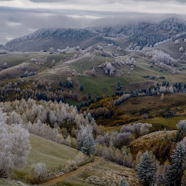 smattering by Irina Mihai - Landscapes Mountains & Hills